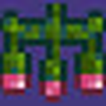 Chandelierterraria mozeypictures Image collections